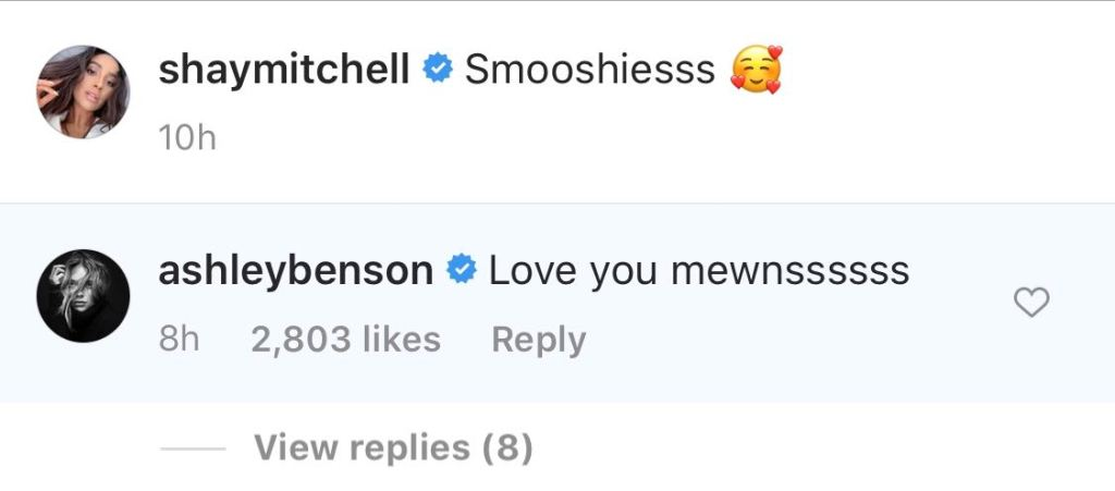 Ashley Benson Comments Love you on Selfie With Ashley Benson