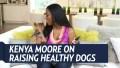 Kenya Moore Healthy Dog
