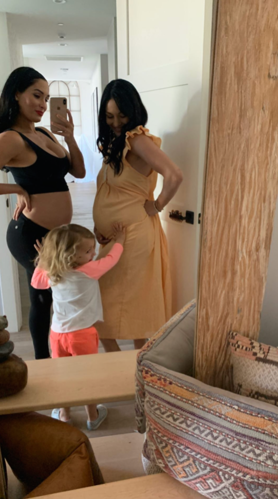 Nikki and Brie Bella with Birdie