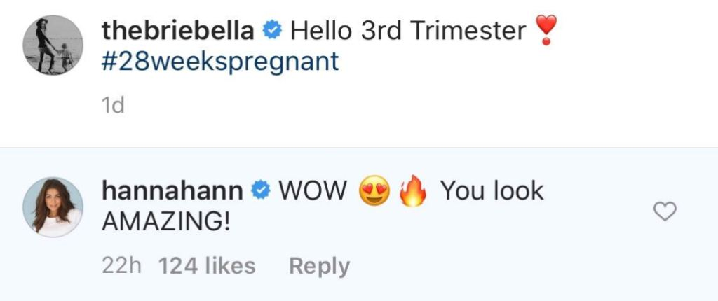 Bachelor Hannah Ann Sluss Gushes Over Brie Bella Nearly Nude Pregnancy Photo in Instagram Comment