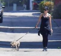 katherine-schwarzenegger-baby-bump-walks-dogs