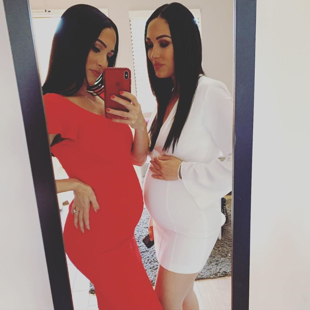Nikki and Brie BElla's Cutest Pregnancy Moments
