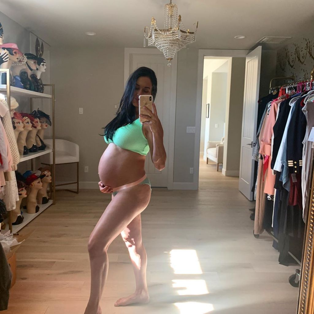 Nikki Bella Brie Bella Baby Bump Photos