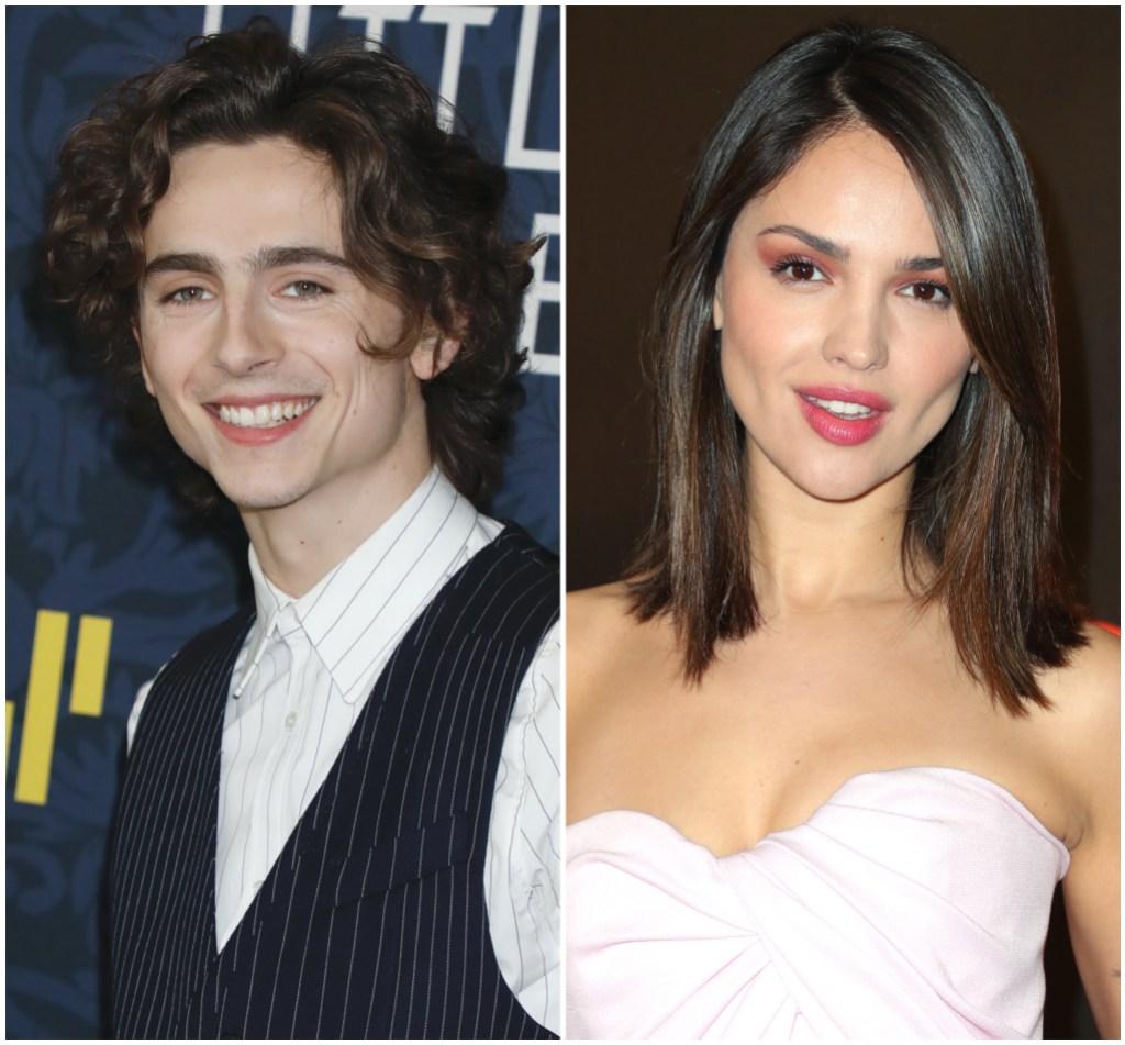 Timothee Chalamet and Eiza Gonzalez Dating Rumors