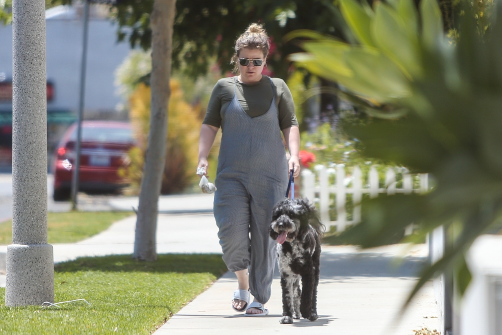 kelly-clarkson-out-first-time-since-divorce-filing-walks-dog
