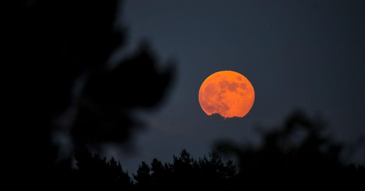 strawberry moon - photo #14