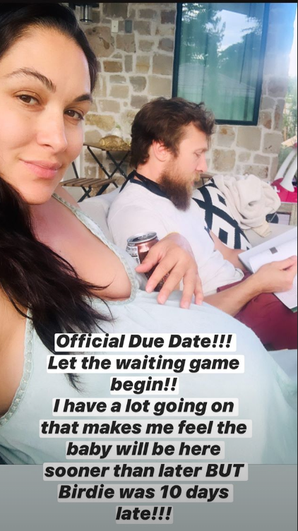brie bella reveals due date