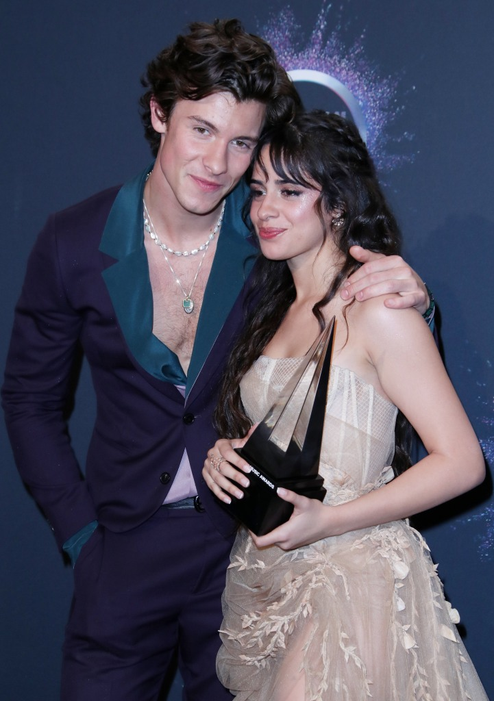 Shawn Mendes and Camila Cabello Taking Some Time Apart