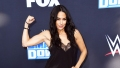 Brie Bella Talks Weight Loss Goals And Getting Back In the Gym To Tone Her Postpartum Body