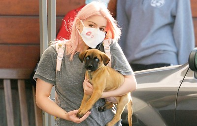 Puppy Love! Ariel Winter Rocks Light Pink Hair While Stepping Out With Her New Dog