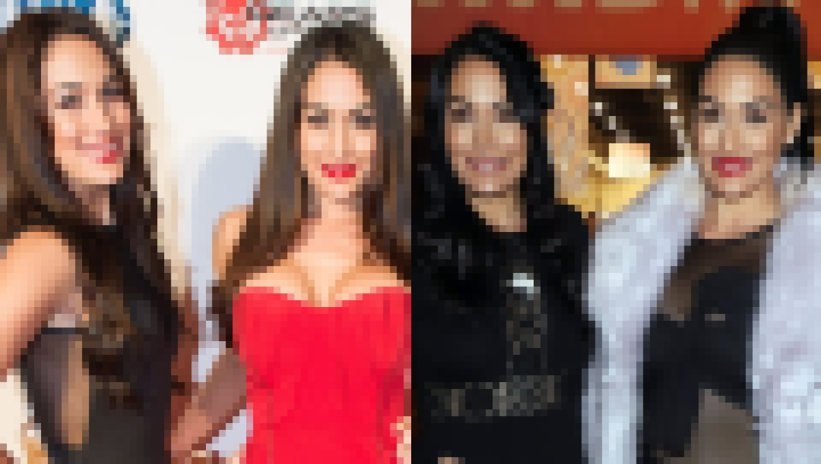 Gorgeous Then and Now! See How Nikki and Brie Bella Have Transformed Through the Years