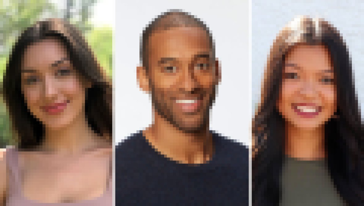 Bachelor Potential Contestants