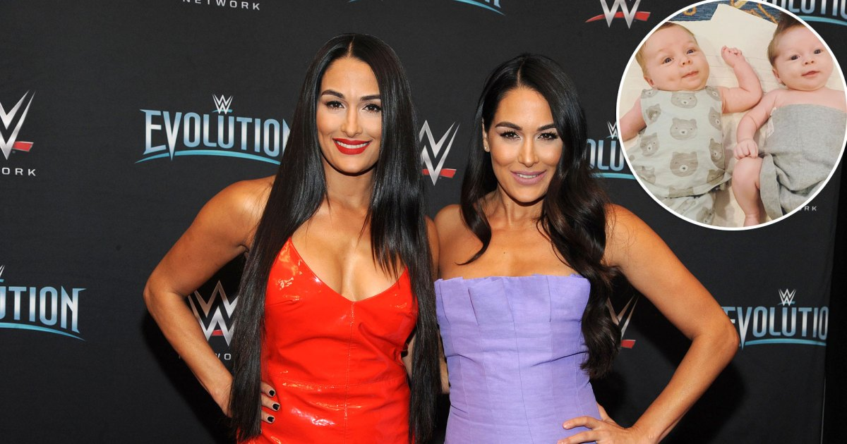 Nikki and Brie Bella Say Their Sons Matteo and Buddy Are 'Spiritual Twins'