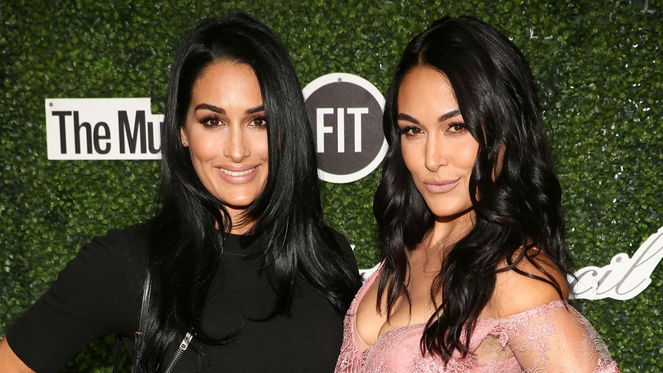 Mom Moments! Nikki and Brie Bella's Sweetest Moments With Their Families