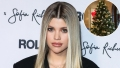 Winter Wonderland! Sofia Richie's Chic Holiday Decor Will Have You Rethinking Your Christmas Tree Aesthetic