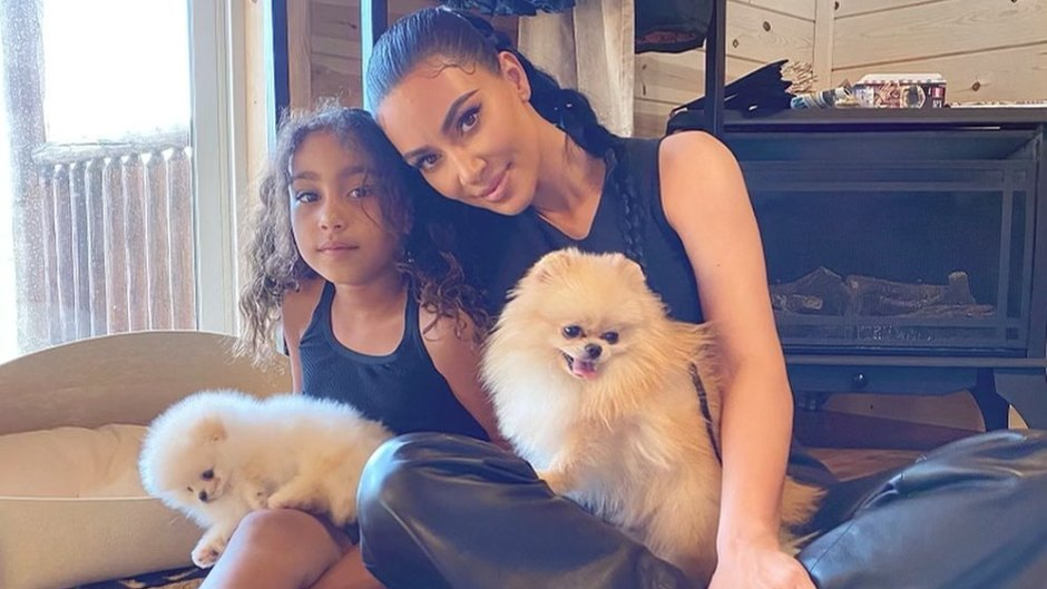 ~Keep Up~ With Every Kardashian-Jenner Family Pet! Kylie's Dogs, Kim's Bearded Dragon and More