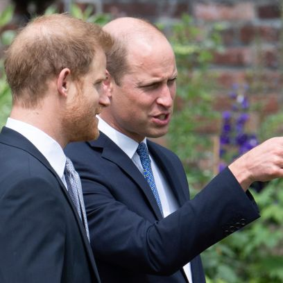 Prince William and Prince Harry Reunite at Princess Diana's Statue Unveiling: See Photos